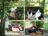 Four Seasons For Bunnies