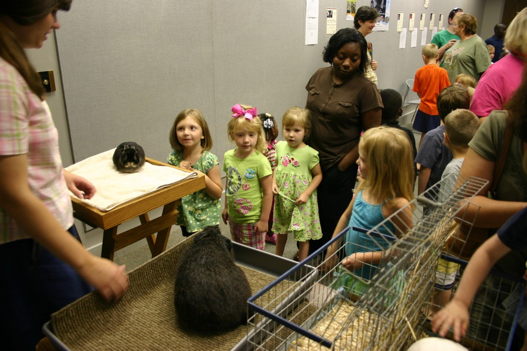 Lined up to pet bunnies_7936
